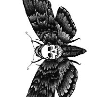 Resonating Powder Moth by taless7