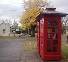 Telephone Boxes at Ross by Wendy Dyer