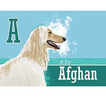 A is for Afghan Photographic Print