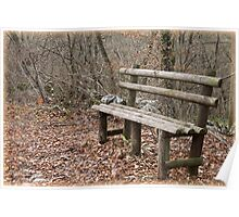 bench in the woods Poster