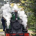 steaming puffing billy by lols