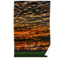 Sunset over Willow Park. Poster