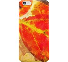 Gold Leaf Fusion iPhone Case/Skin