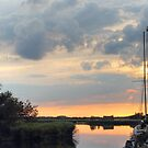 Sunset at horsey mere by Avril Harris