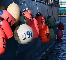 Photo of Fishing Buoys Hanging Over a Boat Railing by griffingphoto