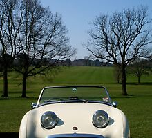 Frogeye Sprite in Sunshine by dfgumby