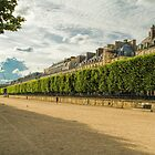 Tuileries, Paris, France by Elaine Teague