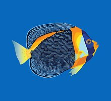 Scribbled angelfish illustration by MickeyEdwards