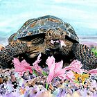 Roxy the Turtle by Yvonne Carter