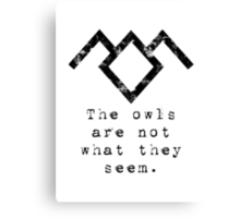 Suspicious owls Canvas Print