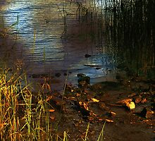 River Runes by RC deWinter