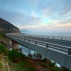 Sea Cliff Bridge, Coalcliff NSW by Malcolm Katon