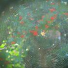 Autumn  web by OlaG