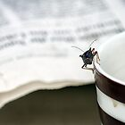 Bug's Life: Breakfast Coffee and Newspaper by Kasia-D