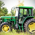 Deere Sighting by Cynthia48