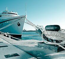 Ship by homydesign