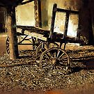 Paint Your Wagon by Barry W  King