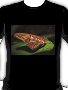 Gorgeous wings T-Shirt