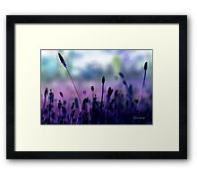 If I had a purple crayon ... Framed Print