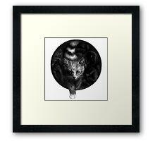 CIRCLE ART - CAT WALKS IN THE DARK Framed Print