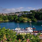 Ilfracombe Harbour  by Rob Hawkins