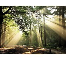 Going out on a lightful September morning again Photographic Print