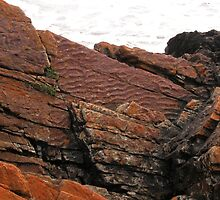 Unusual Rocks, Arthur River, Northwest Tasmania, Australia. by kaysharp