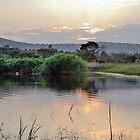 landscape african  lake by spetenfia
