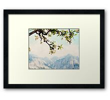 Apple Blossoms and Mountains  Framed Print