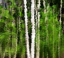 Green Abstract Tree Reflection by Christina Rollo