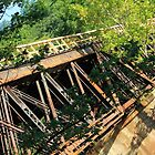 Abandoned Trestle by reindeer