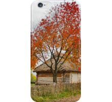 Old village iPhone Case/Skin