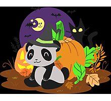 Halloween Panda Photographic Print