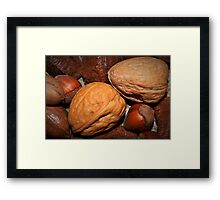Oh nuts! Framed Print