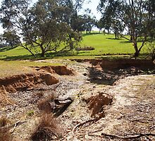 The dried up billabong - Broadford VIC Australia by Margaret Morgan (Watkins)