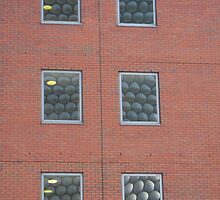 Bubble Window by acespace
