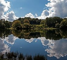 Loughrigg Tarn by Roger Green