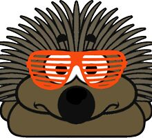 Think you're cool, like porcupine? by Tom Gregory