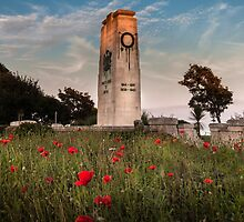 Swansea cenotaph Wales coastal path by leightoncollins