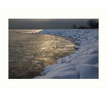 Lily Pad Ice Shines in the Silver Storm Light  Art Print