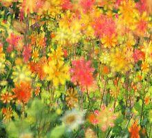 Dash Through a Summer Field by XanMade