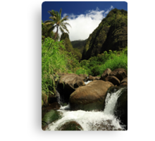 Waterfall At The Iao Needle Canvas Print