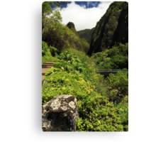 A Bridge To The Iao Needle Canvas Print