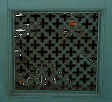 The secret door by Maggie Hegarty