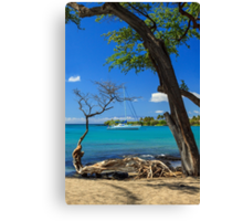A Sailboat In Anaehoomalu Bay Canvas Print