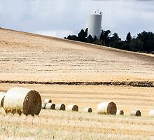 Photo of Bales of Wheat and a Water Tower by griffingphoto