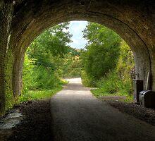 """""""Old Railway Tunnel, Monsal Dale"""" by Bradley Shawn  Rabon"""