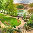 Park on Île de la Cité by Michael Matthews