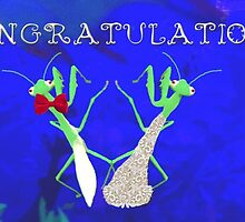 Congratulations Praying Mantis by eleventimes