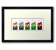 Dutch Tulips part 9 Framed Print